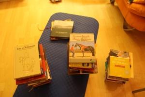 Bücher sortiert